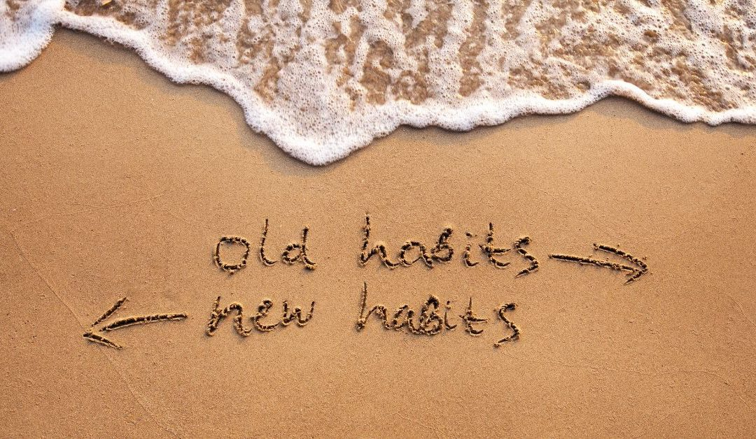 New underwear, new habits and executive function